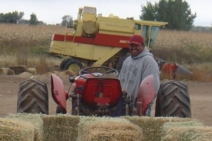 Miller Farms 1.jpg